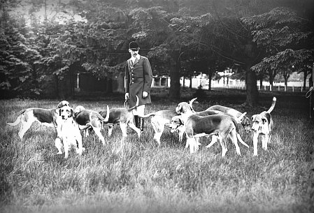 Victorian man with hunting dogs.