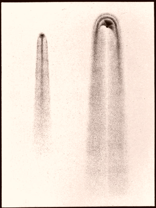 Comet, 1874, The Story Of The Heavens.
