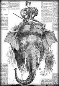 Nellie Bly Articles: Elephant Trainer. New York World, Feb. 23, 1896.